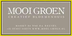 Mooi Groen site rosolo